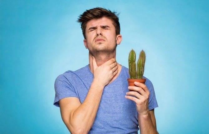 Болит горло с правой стороны при глотании с температурой и без