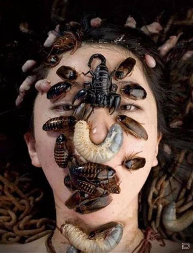 паразиты в голове
