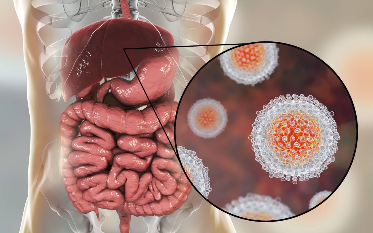 Парентеральные гепатиты и их профилактика