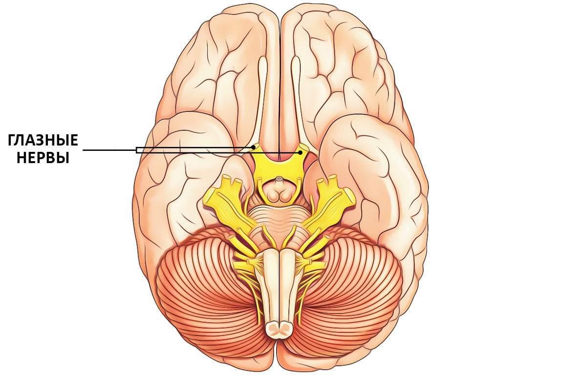 глазной нерв лечение