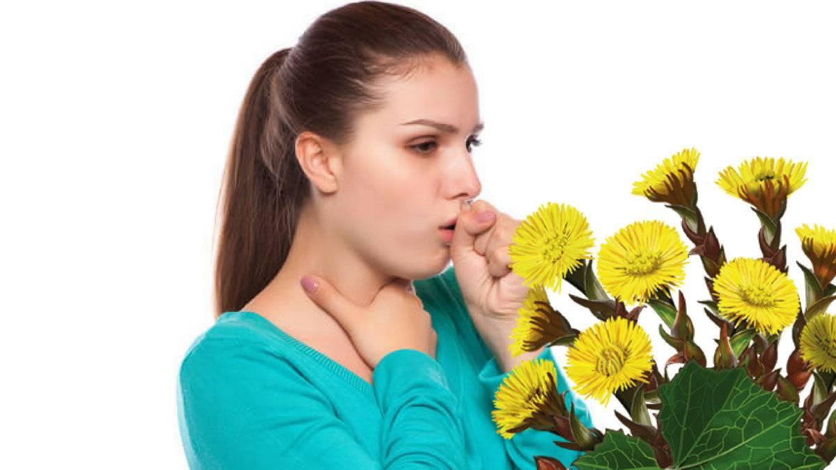 Как заварить мать и мачеху листья от кашля
