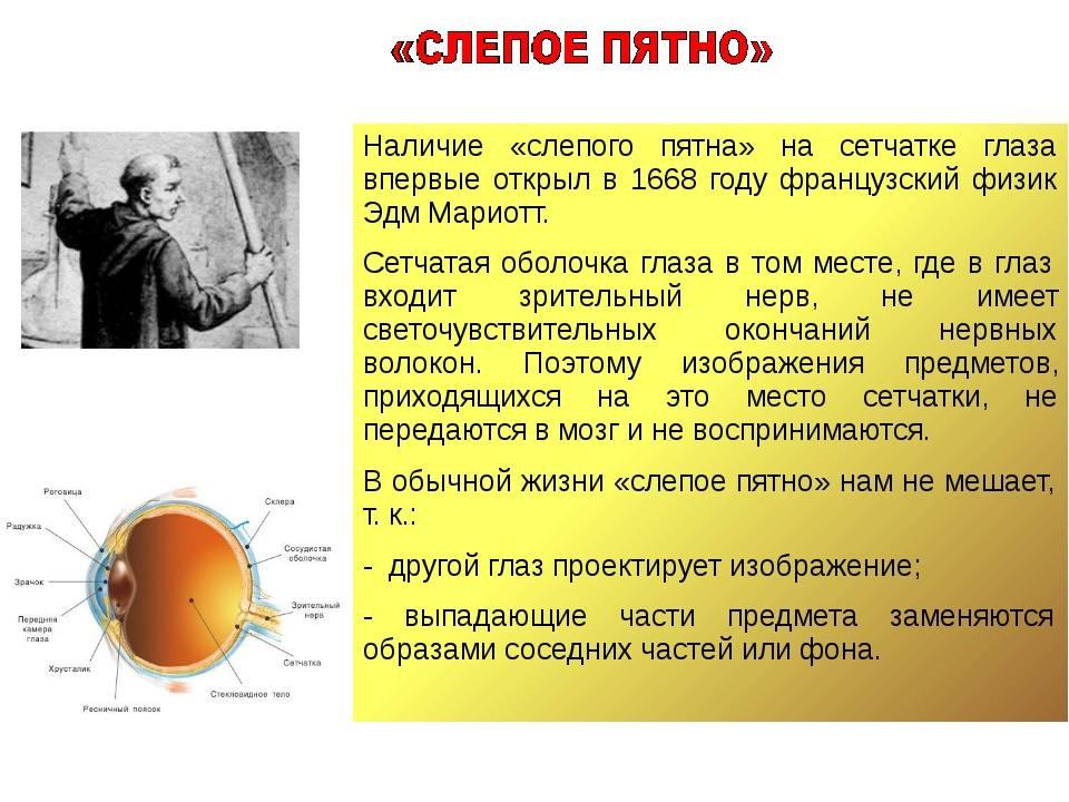 Слепое пятно — википедия переиздание // wiki 2