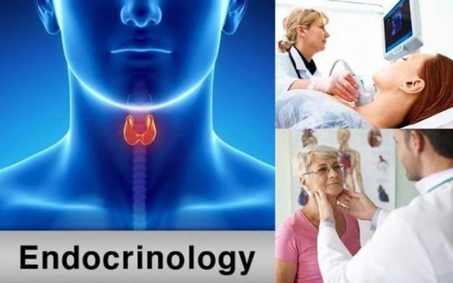 Эндокринолог - что это за врач? консультация, диагностика и лечение. записаться онлайн