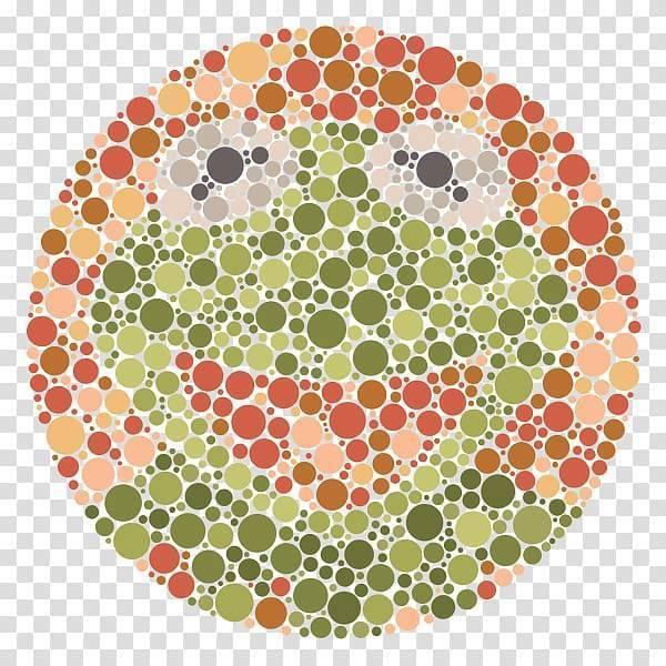 Цветное зрение у человека