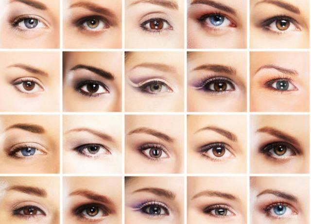 Цвет глаз — википедия с видео // wiki 2