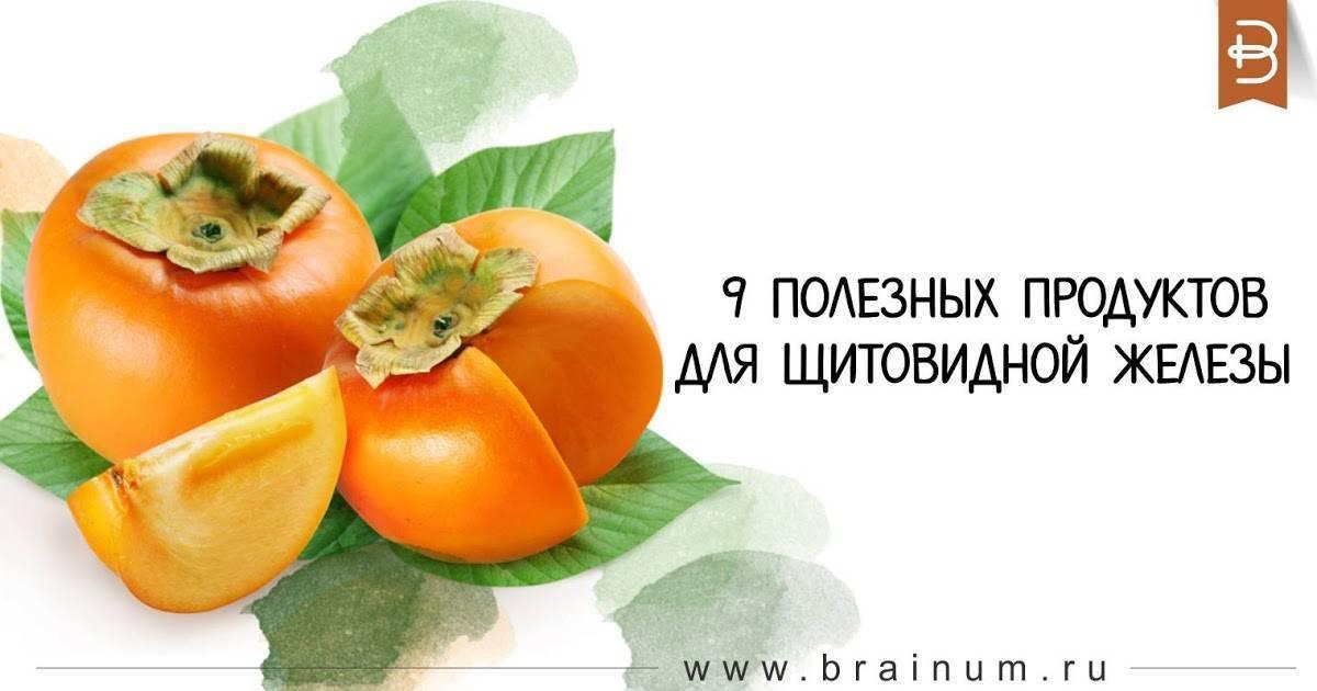Лучшие продукты для щитовидной железы