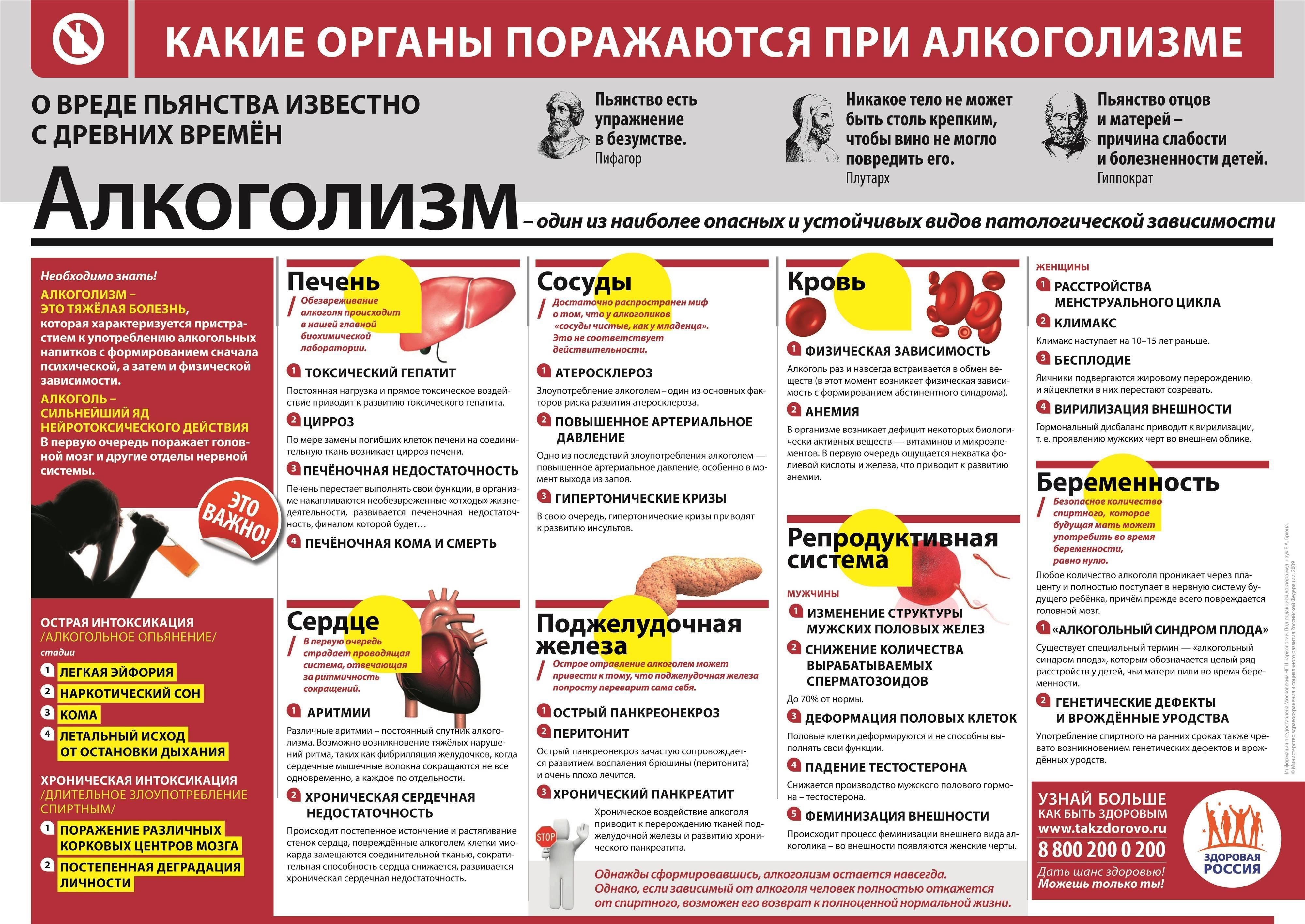 Профилактика алкоголизма. виды и меры профилактики алкоголизма в россии