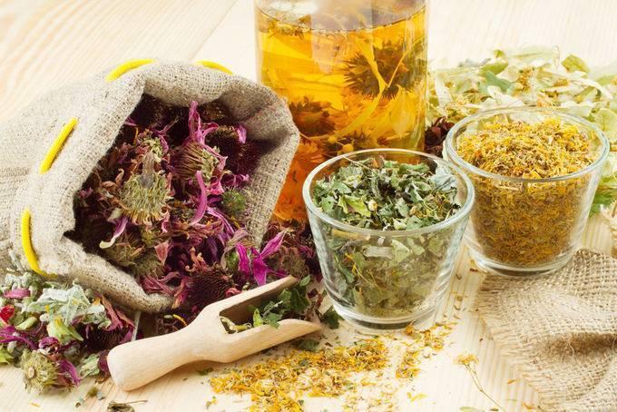Отхаркивающие средства для выведения мокроты, от кашля – препараты, травы, отхаркивающие народные средства
