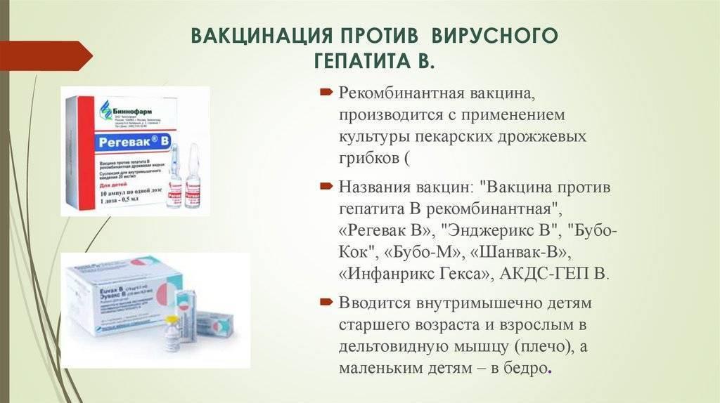Особенности вакцинации новорожденного от гепатита в