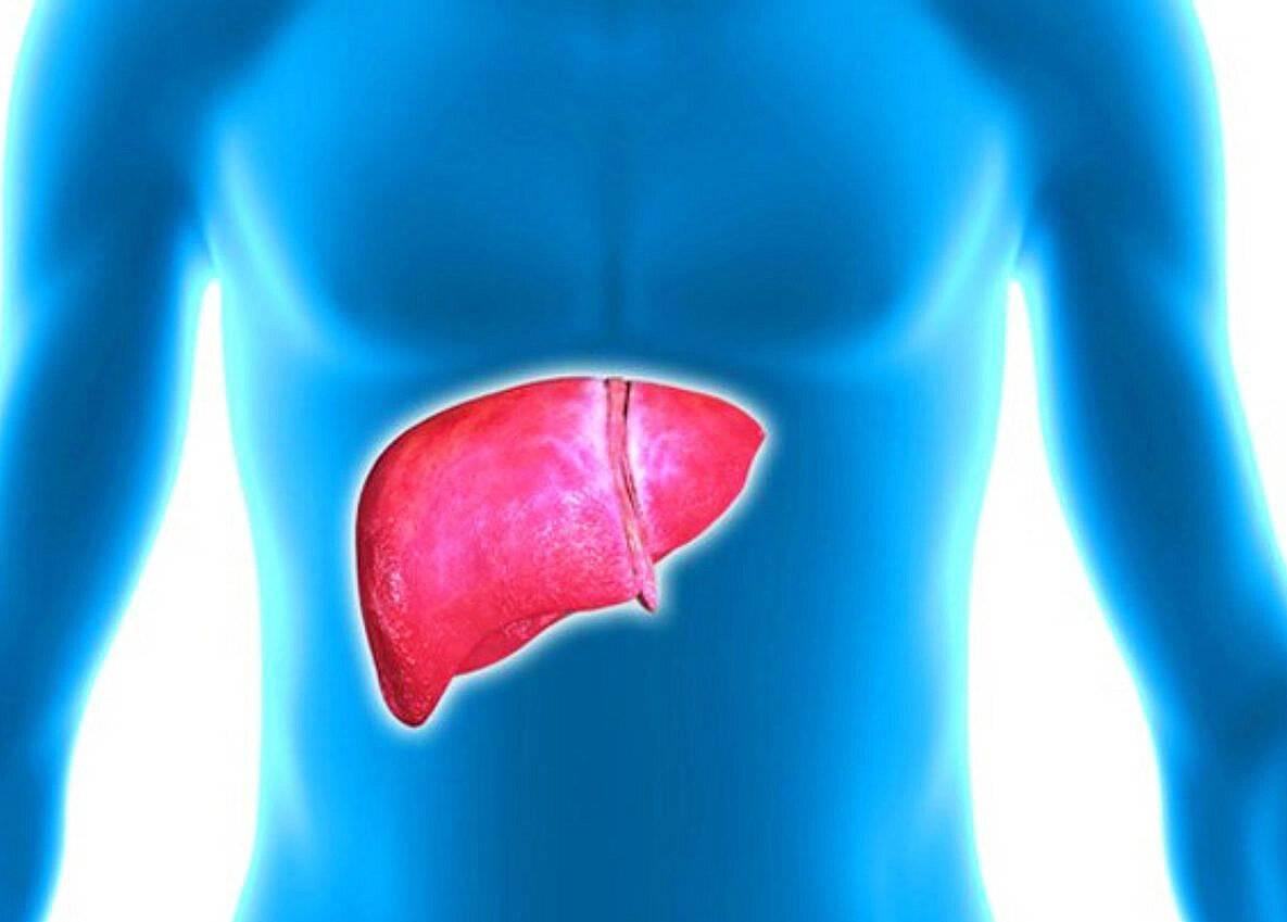 Лечение и прогноз при кардиальном циррозе