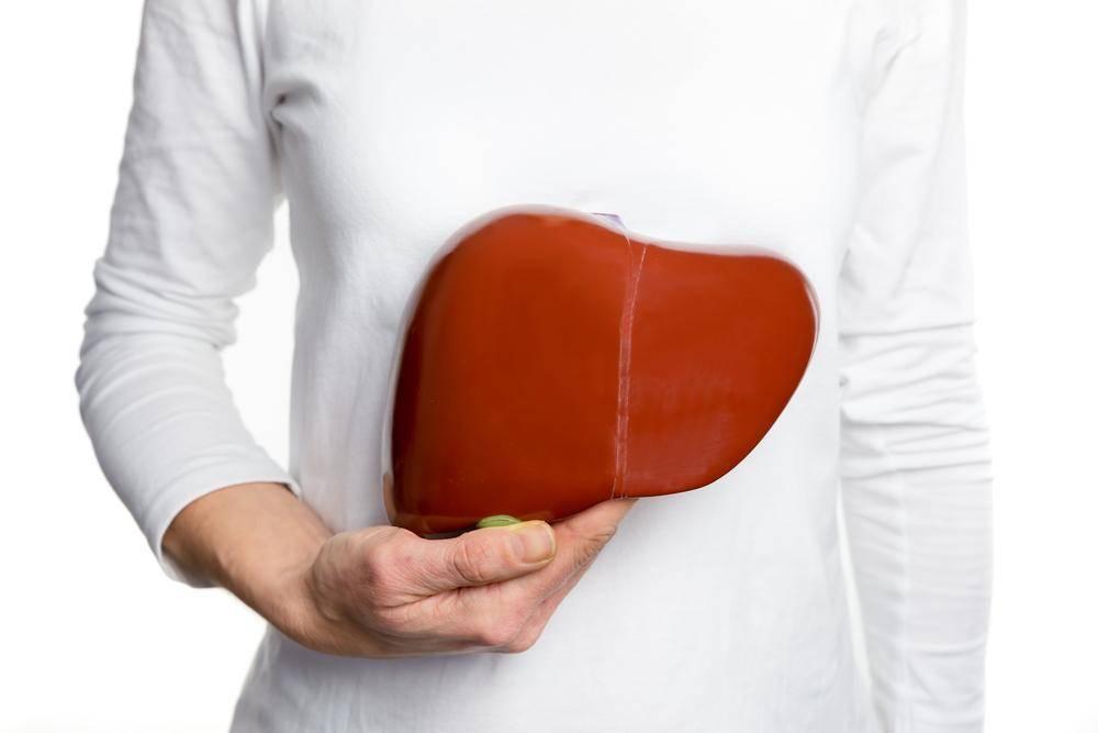 Нарушения функции печени | что делать, если нарушилась функция печени? | лечение нарушений и симптомы болезни на eurolab