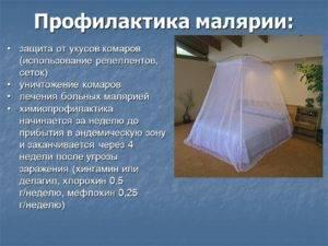 Что такое малярия? симптомы, причины, профилактика и лечение