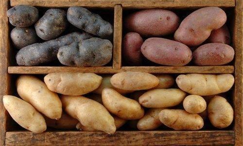 Картофель при холестерине можно есть - про холестерин