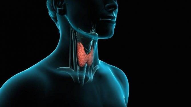 Гиперплазия щитовидной железы что это такое у детей симптомы и лечение