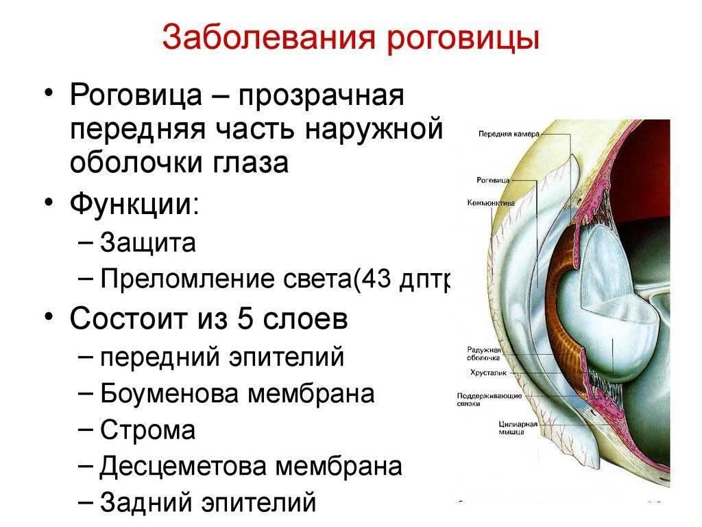 заболевание роговицы