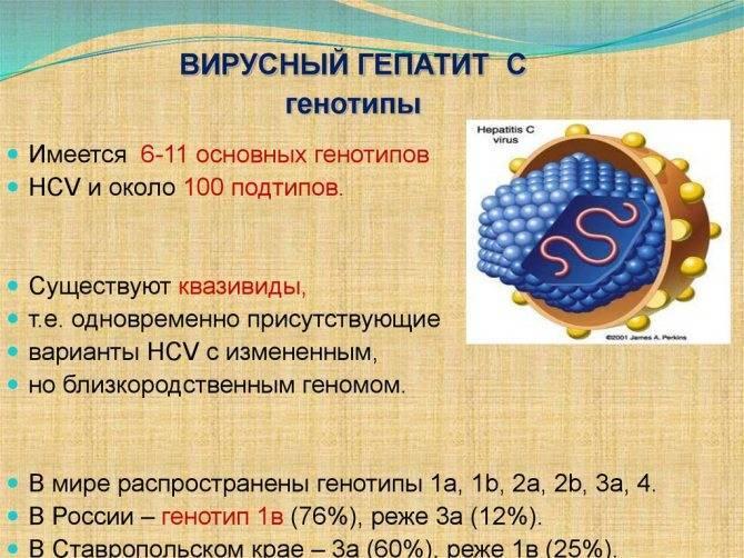 Гепатит с генотип 3а