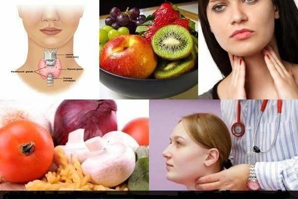 щитовидная железа и обмен веществ