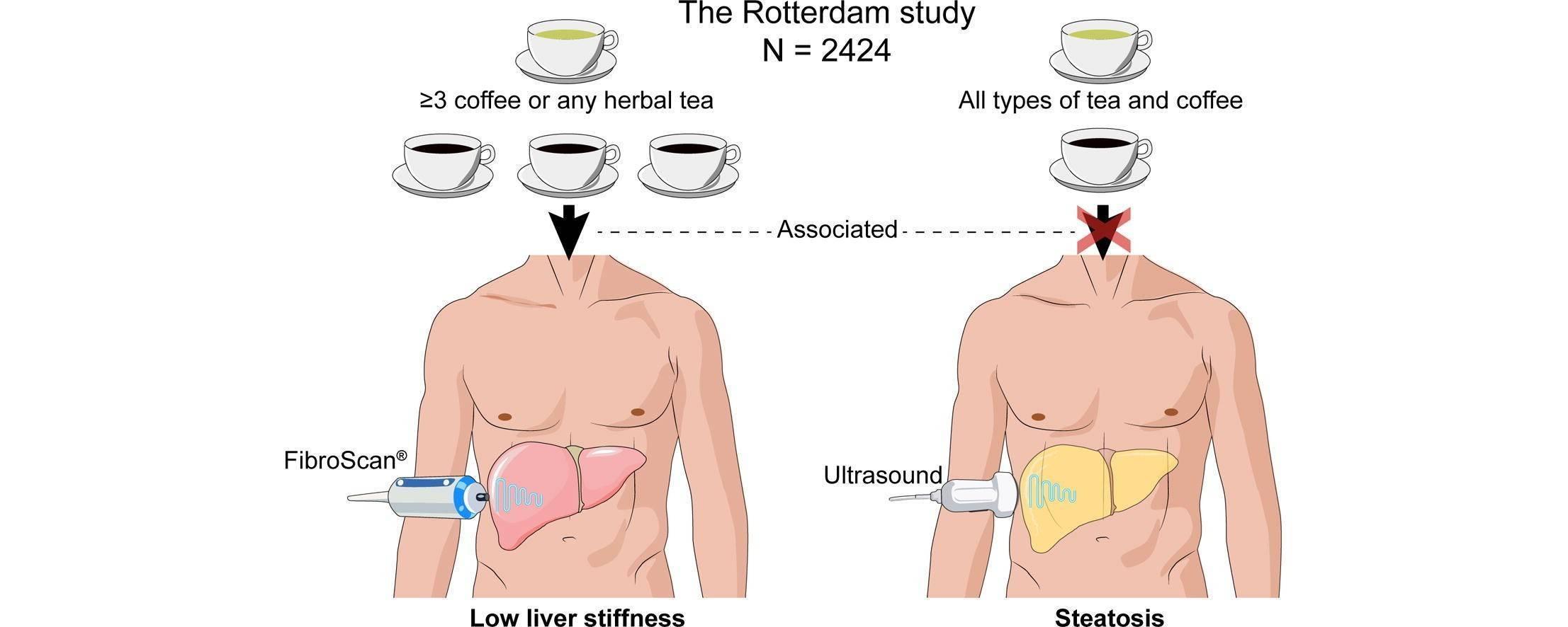 При каких заболеваниях надо пить кофе - польза и действие