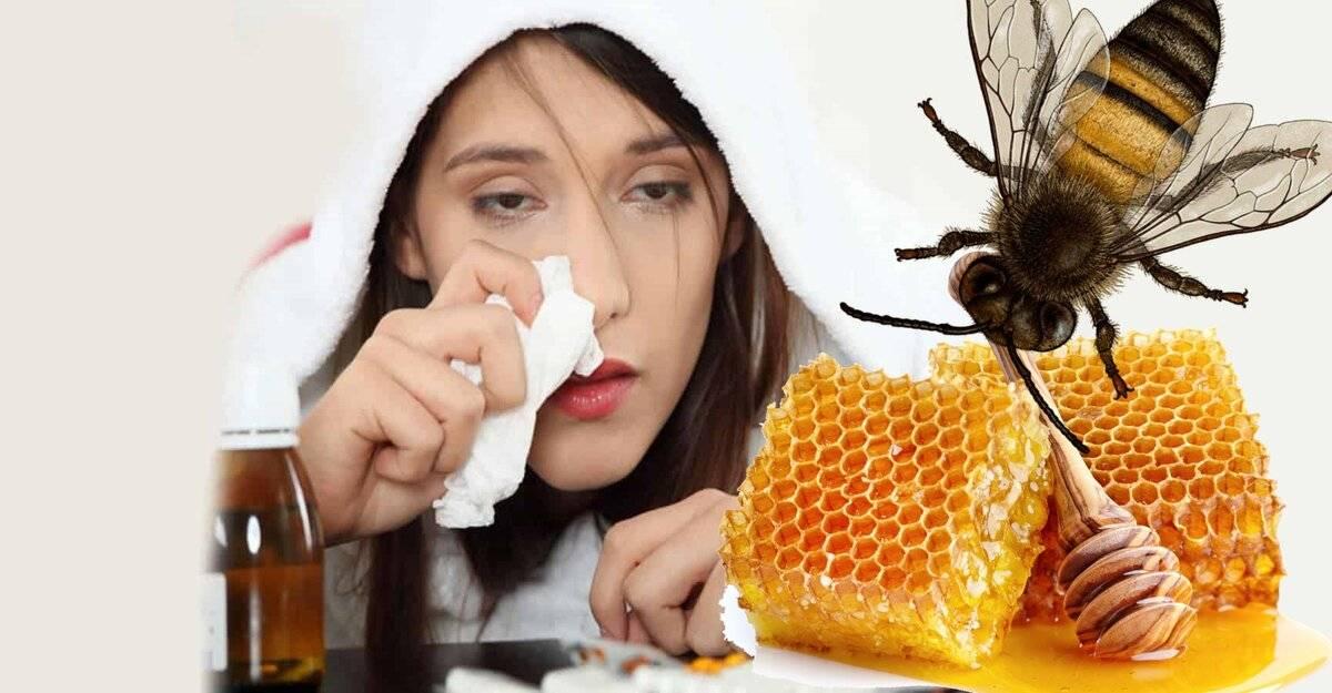 Капли в нос с медом и алоэ от насморка