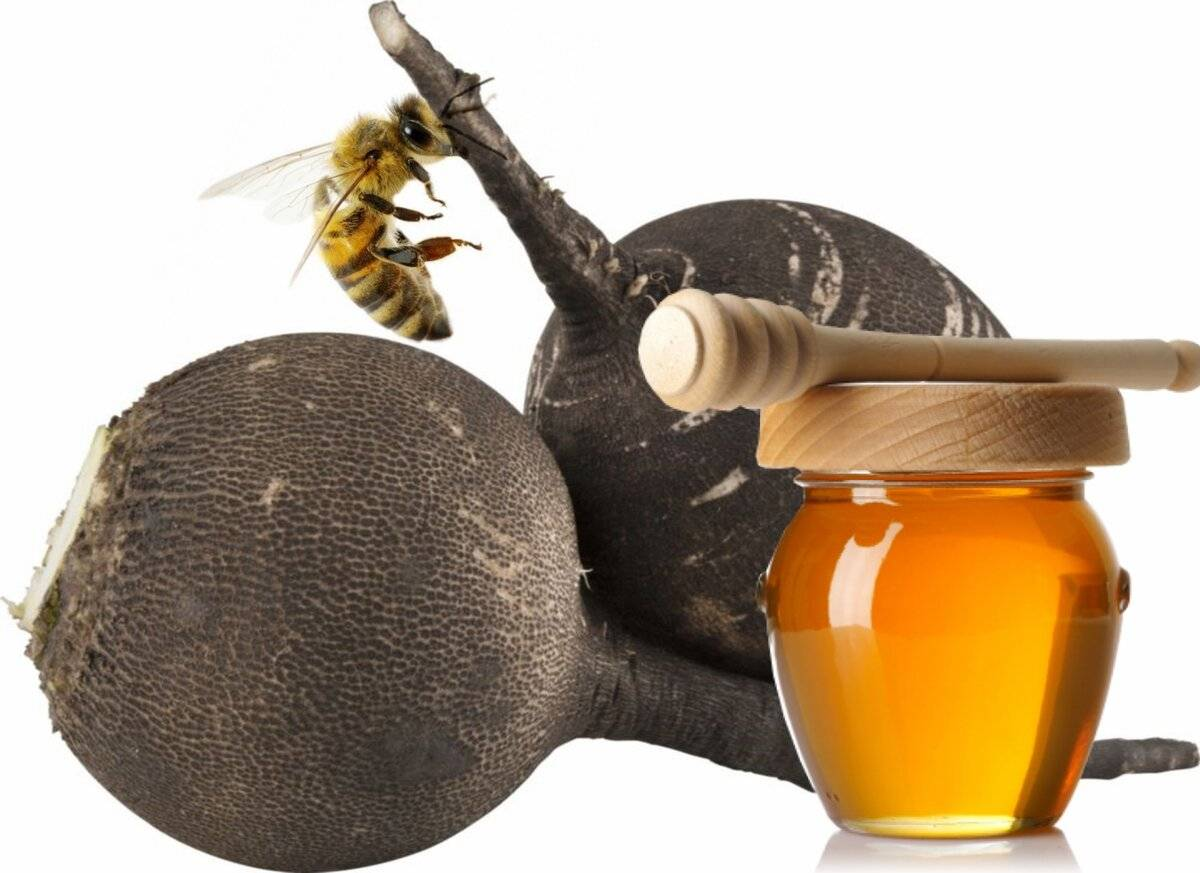 Рецепт от насморка мед сода масло