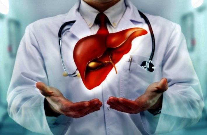Сколько живут после трансплантации печени