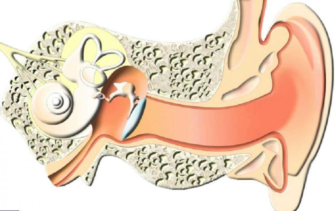 Причины появления выделений из уха