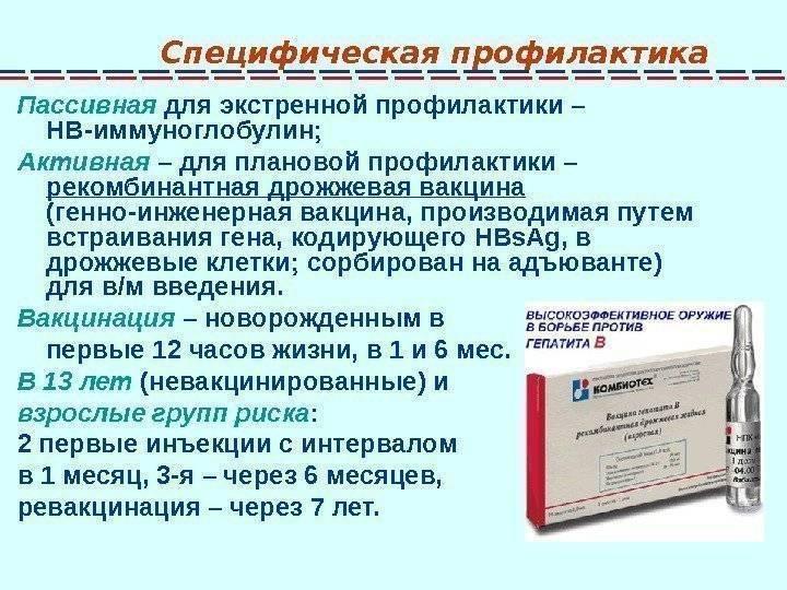 гепатит б профилактика