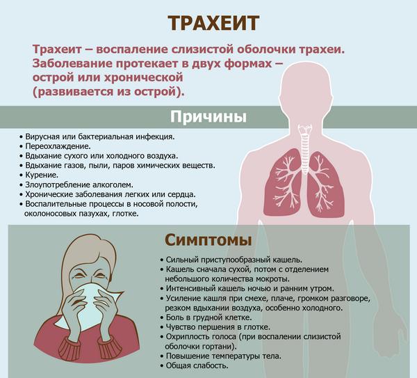 Первые признаки трахеита у взрослых и детей - симптомы, диагностика и лечение в домашних условиях