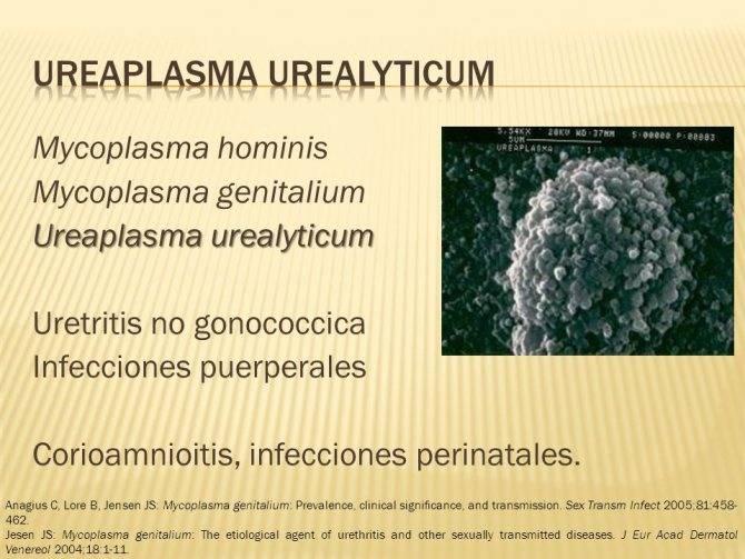 уреаплазма уреалитикум у мужчин лечение