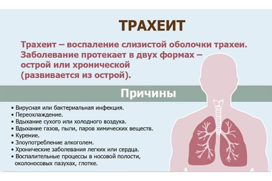 острый трахеит лечение народными средствами