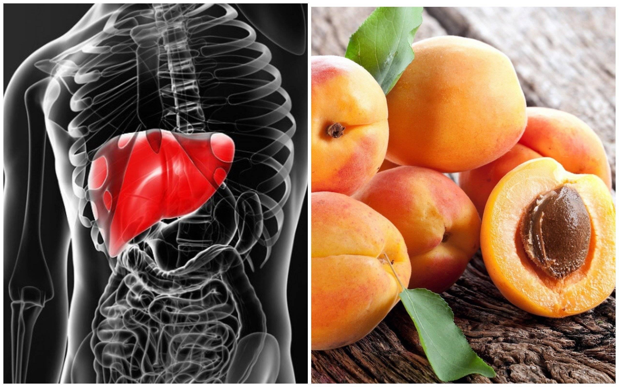 Какие фрукты можно есть при гепатозе печени