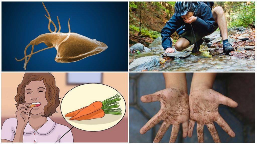 как лечить лямблии у детей по доктору комаровскому