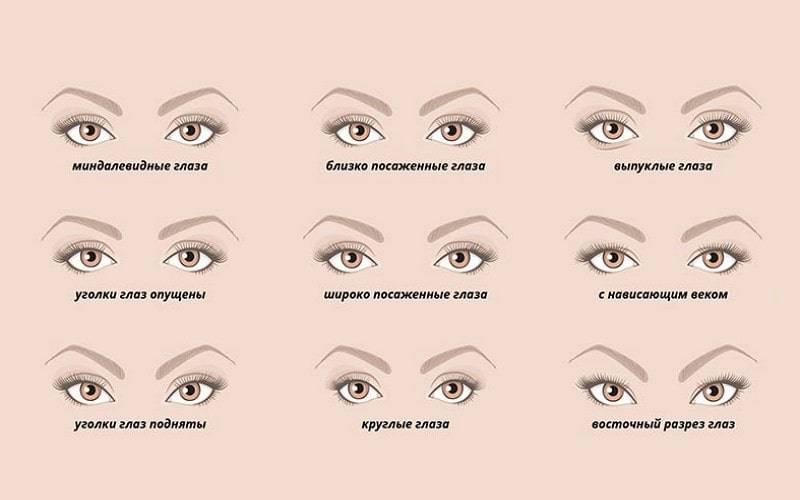 типы глаз