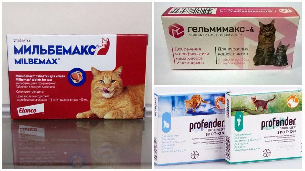 можно ли беременным пить таблетки от глистов