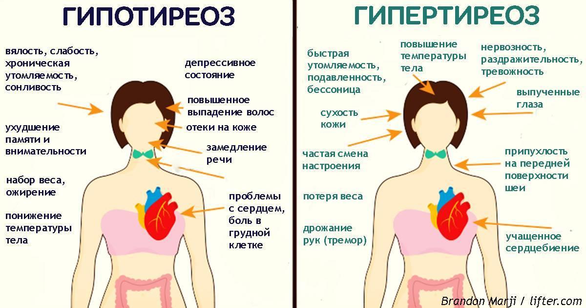 Кашель при щитовидке: симптомы, лечение
