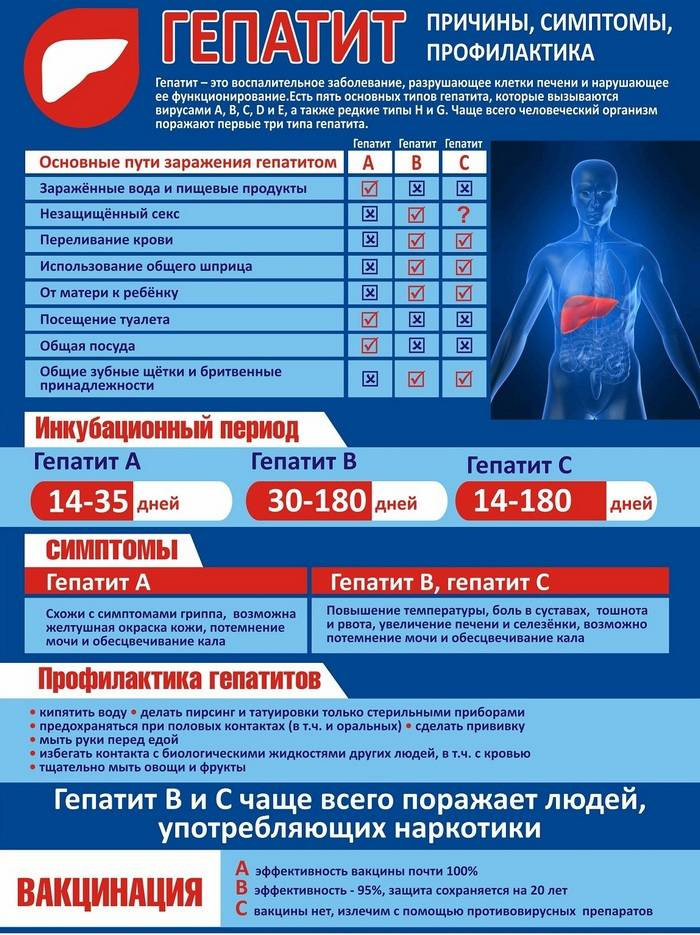 Профилактика вирусного гепатита а специфическая и неспецифическая