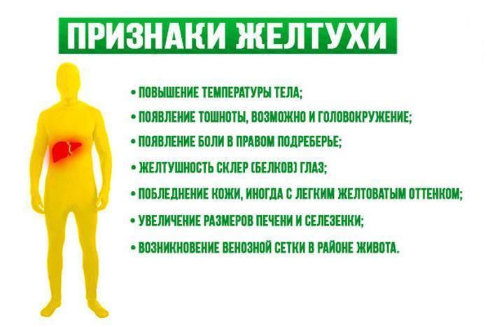 Заразна ли механическая желтуха для окружающих людей