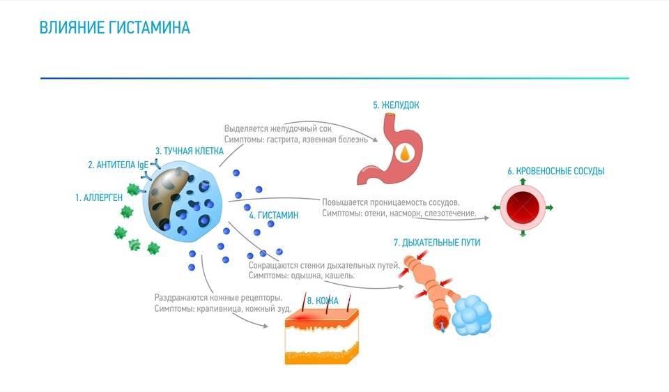 дерматит при астме