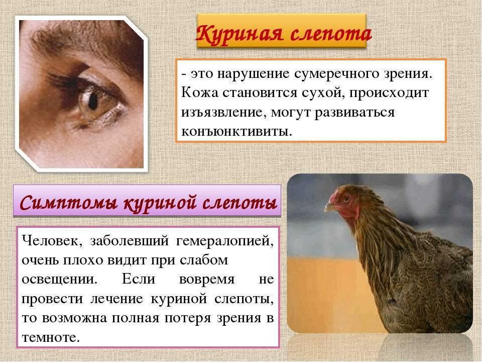 Нарушение сумеречного зрения это - лечение глаз