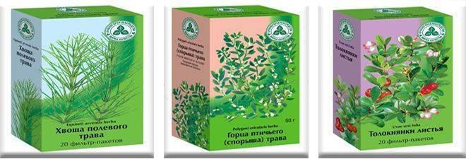 лекарственные травы при цистите у женщин