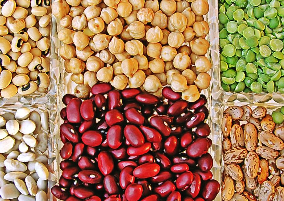 бобы и холестерин