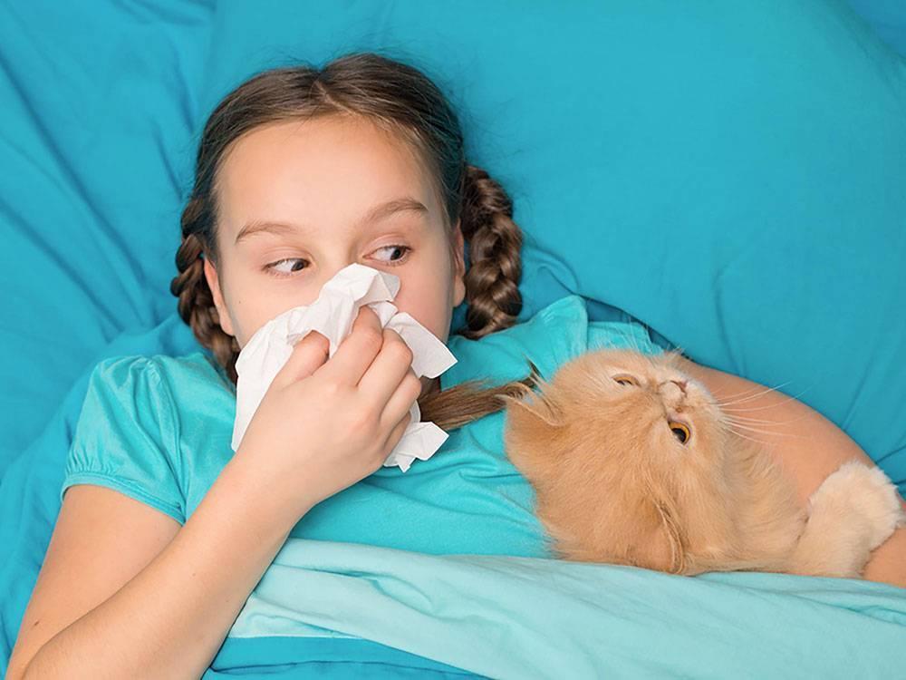 Синусит - детские болезни: как лечить