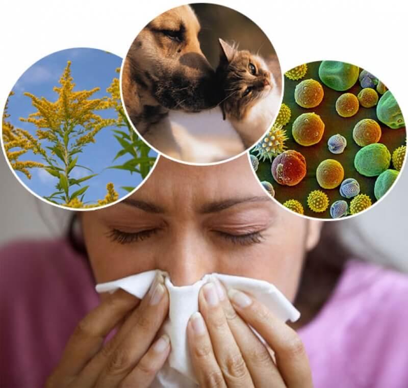Аллергический синусит: симптомы и лечение