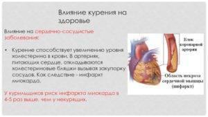 фолиевая кислота и холестерин