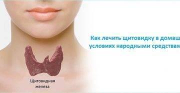 Лечение заболевания щитовидной железы народными средствами