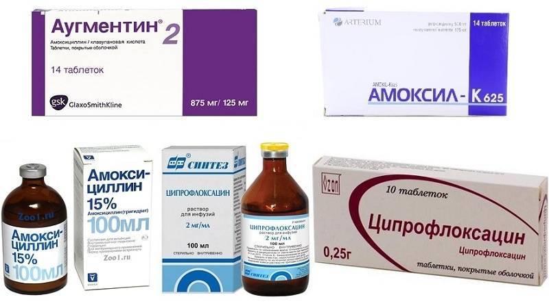 антибиотик при отите для детей