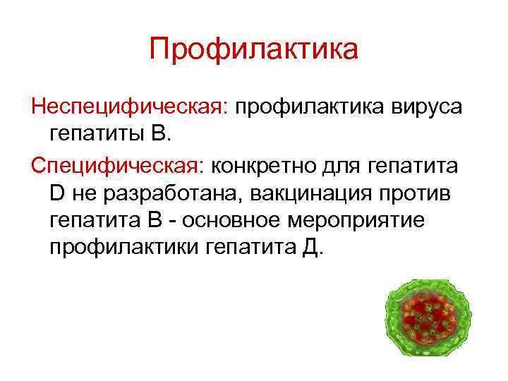 Гепатит b (б) – причины, пути передачи, симптомы и лечение
