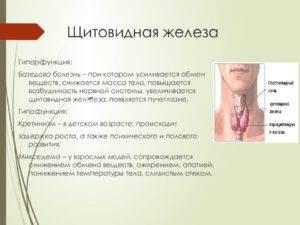 температура при щитовидной железы