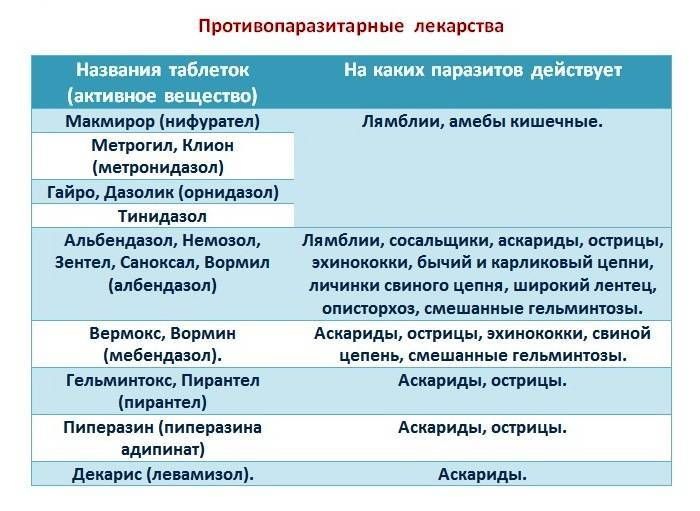 лечение от паразитов в организме человека медицинскими препаратами