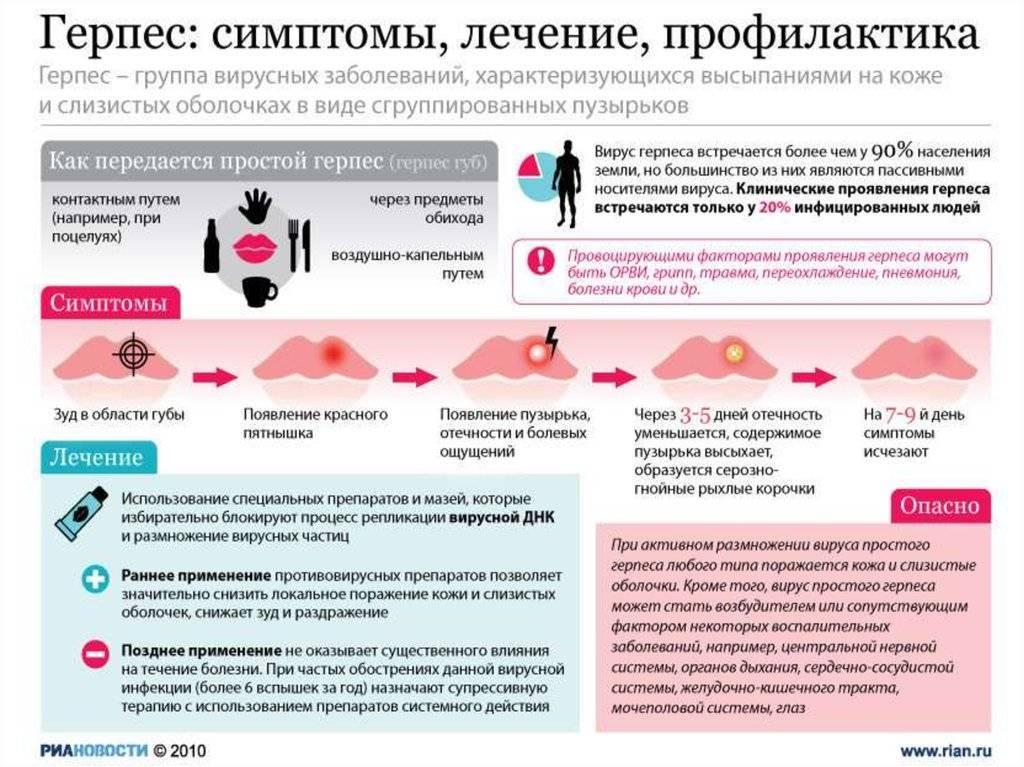 генитальный герпес когда заразен